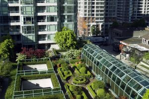 Financial Services Authority as single real estate regulator in British Columbia